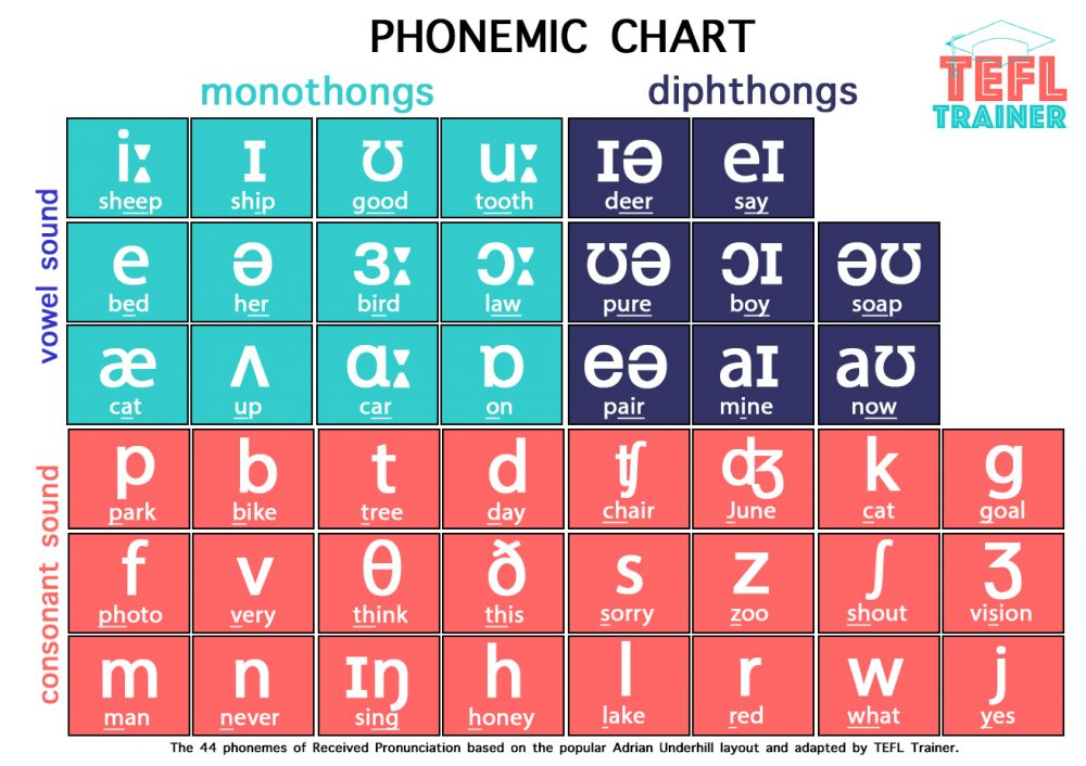 phonemic chart TEFL Trainer
